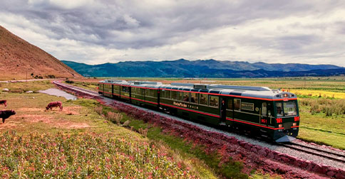 Tren Inca Rail