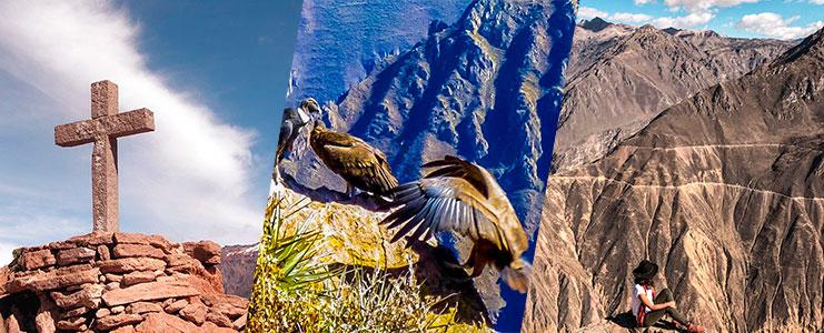 Tour Cañon del Colca - Vista de Cóndores
