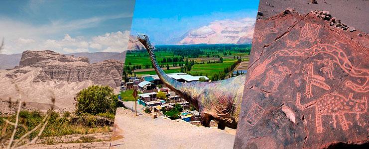 Tour Valle de Majes - petroglifos de Toro Muerto