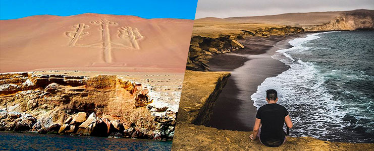 Tour Islas Ballestas y Paracas