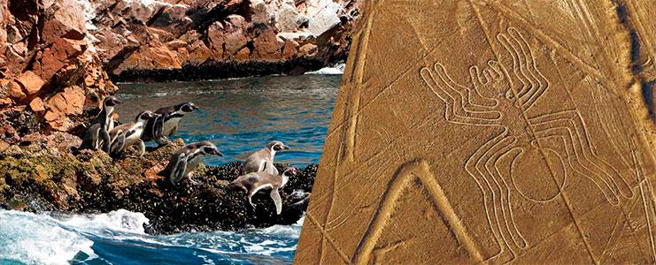 Tour Islas Ballestas, Paracas y Nazca