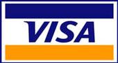 pago con visa link